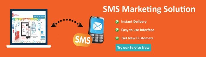 Bulk Sms Service Provider in Delhi